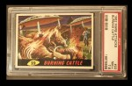 1962 Bubbles Inc Mars Attacks #22   Burning Cattle Front Thumbnail